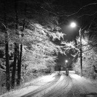 Зимнее утро :: Елена Миронова