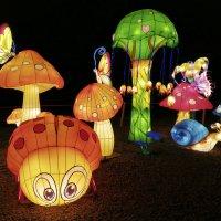 Светящееся мультяшное лето по-китайски ) :: Тамара Бедай