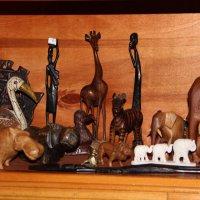 Моя маленькая  Африка. :: Венера Чуйкова