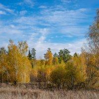 Осенняя пора :: Виктор