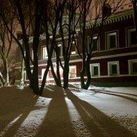 Волшебство ночи :: Татьяна