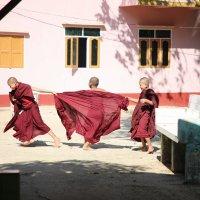 Мьянма молодые монахи :: Andrey Vaganov