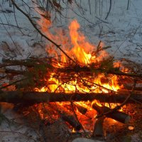 Просто костёр в лесу :: Владимир Перваков