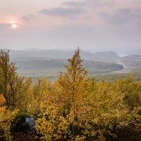 Осень в Заполярье :: Ольга