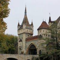 Замок Вайдахуняд :: Владимир Соколов