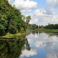 на реке Оредеж... :: Андрей Вестмит