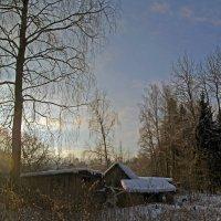 Зима :: Нина Синица