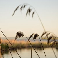 Волга вид м берега :: Юрий Хайров