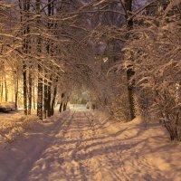 Белая дорожка :: Надежда Баликова