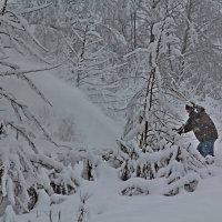 Снегоуборщик :: Надежда Баликова