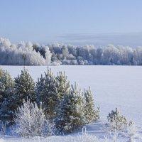 Белое поле :: Алексей Екимовских
