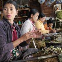 Мьянма изготовление сигар вручную :: Andrey Vaganov