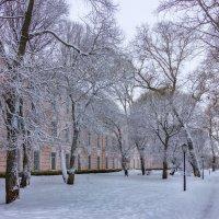 Один снежный денёк*** :: Нина Кутина
