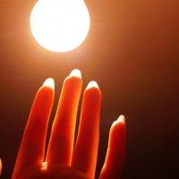 Дотянуться до солнца :: Елена Елена