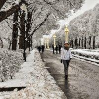 Вот и снег украшает аллеи в парке Горького,а не только девушки... :: Anatoley Lunov