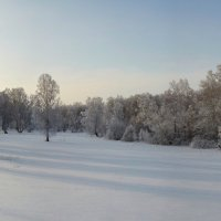 зимние прогулки :: Николай Мальцев