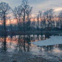 Зима потерялась... :: Людмила Зайцева