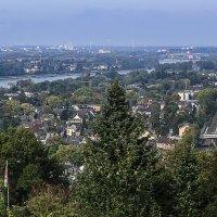 Рейн и его городки :: Alexander Andronik