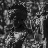 Статуи :: Глеб Дубинин