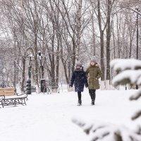 Первый снег :: Я NIKON