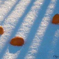 Мандарины в снегу :: Ольга Бекетова