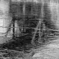 Вмёрзшая тень моста. :: Анатолий. Chesnavik.