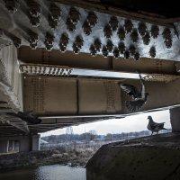 под мостом :: Валерий Чернов