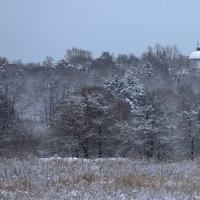 Снег выпал в январе. :: Александр Сергеевич Антонов