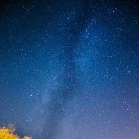 Млечный путь :: Глеб Дубинин