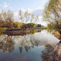Весна в парке :: Виктор К