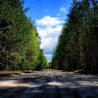 the road ... :: Роман Шершнев