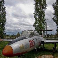 Учебный самолёт Л-29 :: Павел Зюзин