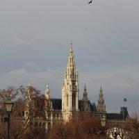 Австрия. Вена :: Юлия Валиахметова