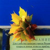 осень :: Вадим Виловатый