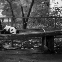 одиночество :: Ирина