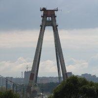 Октябрьский мост :: Анна Бердникова