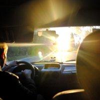 на встречу солнцу... :: Дарина Нагорна