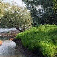 Солёный ручей. :: Sergey Serebrykov