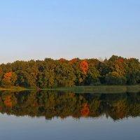 Смотрится в озеро.. :: Александр Герасенков