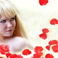 белое облако роз :: Елена Ненашева