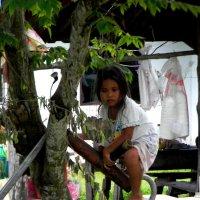 Thai kid :: Alets Ra