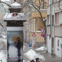 Зимняя Вена. Туристы. :: Наталия Крыжановская