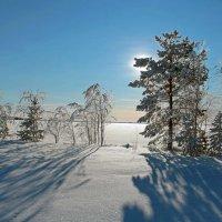 Берег озера... :: Сергей
