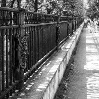 Вдоль ограды Михайловского замка :: Valerii Ivanov