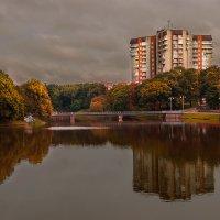 Нижнее озеро, Калининград :: Наталья Наумова