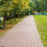 Осень :: Сергей Макаренков