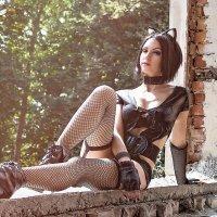 wildcat :: Artem ArtKetler