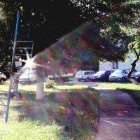 солнечные блики :: КАТЕРИНА ЖДАНОВИЧ