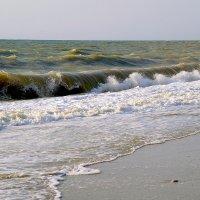 Черное море.... :: Марина Брюховецкая