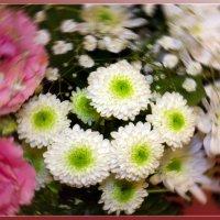 Осенние цветы :: Ирина Рассветная